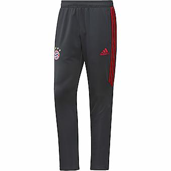 2017-2018 Bayern Munich Adidas Training Pants (Dark Grey) - Kids
