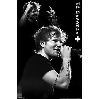Ed Sheeran - Mic Poster Print
