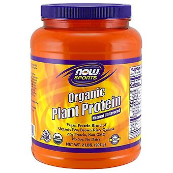 Now Foods Plant Protein Organic Vanilla 907 gr (Sport , Muscle mass , Proteins)