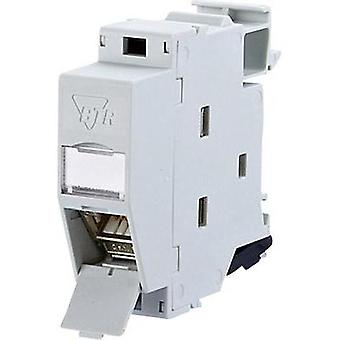 Network outlet DIN rail CAT 6A Metz Connect 130B127003-E Light grey (RAL 7035)