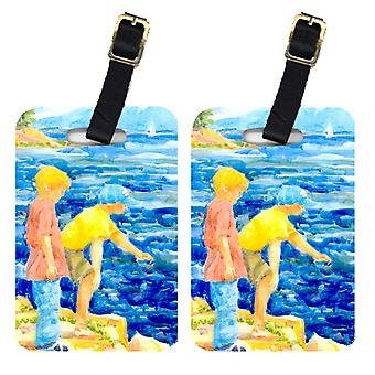 Carolines Treasures  6008BT Pair of 2 The Boys at the lake or beach Luggage Tags