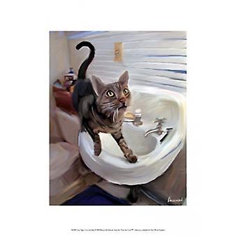 Gray Tiger Cat on the Sink Poster Print by Robert McClintock (13 x 19)