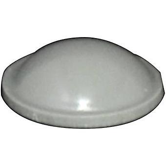 TOOLCRAFT PD2010G Foot self-adhesive, circular Grey (Ø x H) 10 mm x 3.1 mm 1 pc(s)