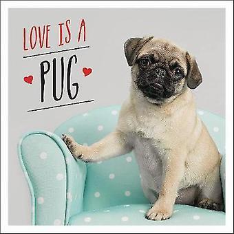 L'amour est un roquet - A Pugtastic Celebration of très jolis chiens de The World par