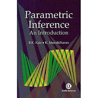 Parametric Inference: An Introduction