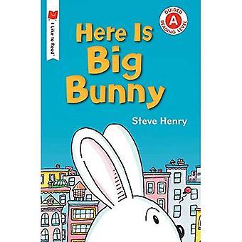 Här är Big Bunny