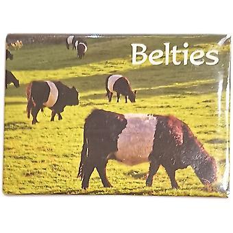 Belties (Skotlannin Belted Galloways Magnet by Lyrical Skotlanti