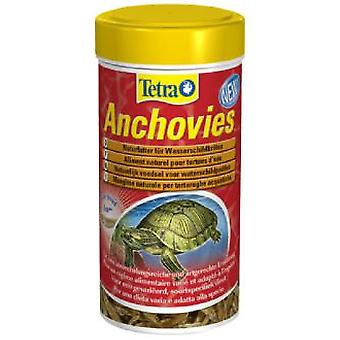 Tetra Anchovies (Reptilien , Reptilienfutter)