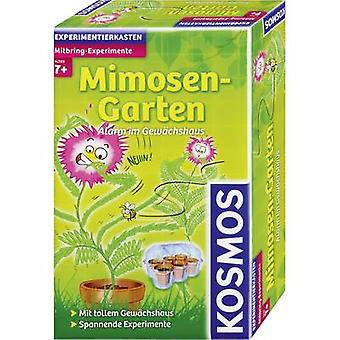 Science kit Kosmos Mitbring-Experimente Mimosen-Garten 657031 7 years and over