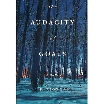 The Audacity of Goats (North of the Tension Line)