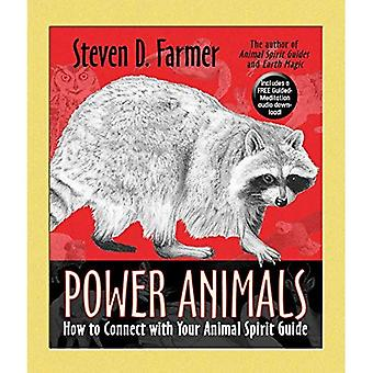 Power Animals: How to Connect with Your Animal Spirit Guide