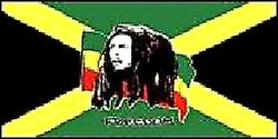 Bob Marley flagg 5 ft x 3 ft med hull For oppheng