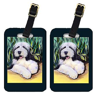 Carolines Treasures  SS1038BT Pair of 2 Bearded Collie Luggage Tags