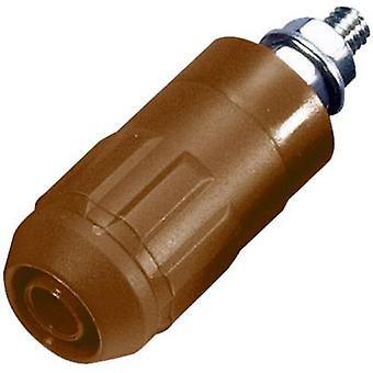Jack socket Socket, vertical vertical Pin diameter: 4 mm Brown S