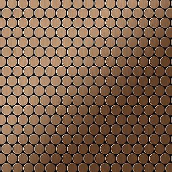 Metal mosaic Titanium ALLOY Penny-Ti-AB