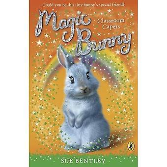 Magische Bunny: Klassenzimmer Kapern