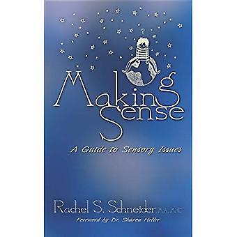 Making Sense: En Guide till sensoriska frågor