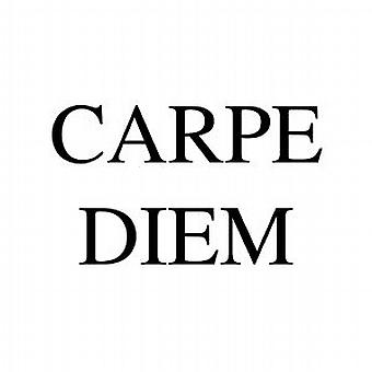 CARPE DIEM LATIN WALL QUOTE