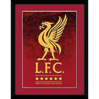 Liverpool Crest og stars 18-19 Collector print 30,5 x41cm