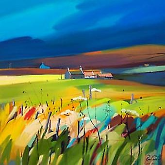 Pam Carter print - Slates & Slopes, Orkney