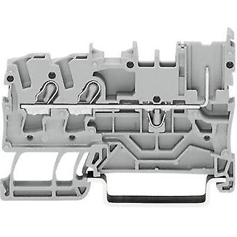Base terminal 5.20 mm Pull spring Configuration: L Grey