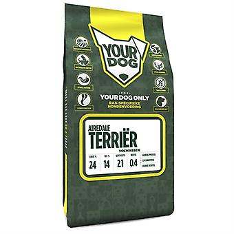YOURDOG AIREDALE TERRIER ADULT 3 KG