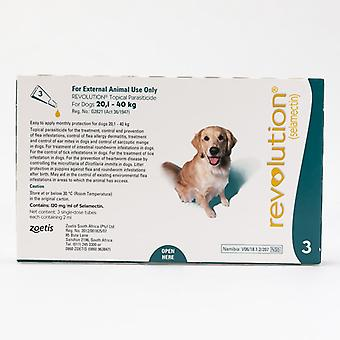 Revolusjon (Blågrønn) for hundene 20.1-40kg(40.1-85lbs), 3 Pack