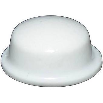 La TOOLCRAFT PD2115W piede bianco autoadesivo, circolare (Ø x H) 11,1 x 5 mm 1/PC