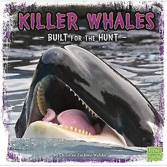 Killer Whales: Built for the Hunt (First Facts: Predator Profiles)