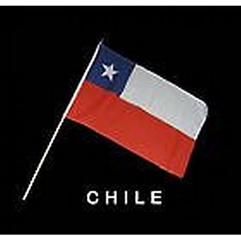 Bandera de Chile mano Held