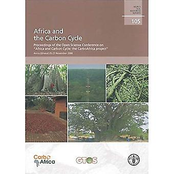 Africa and the Carbon Cycle