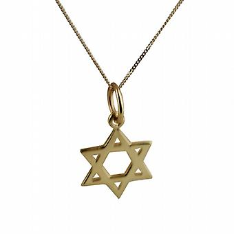9ct Gold 12mm plain Star of David Pendant with a curb Chain 20 inches
