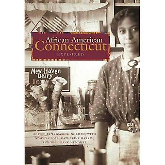 African American Connecticut� Explored (Garnet Books)