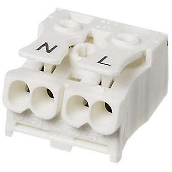 Lamp terminal flexible: -2.5 mm² rigid: -2.5 mm² Number of pins: 2 Adels-Contact LK980-01/2B 1 pc(s) White
