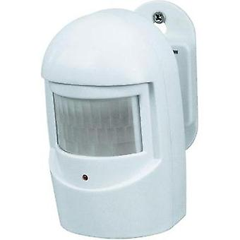 Motion detector 33551