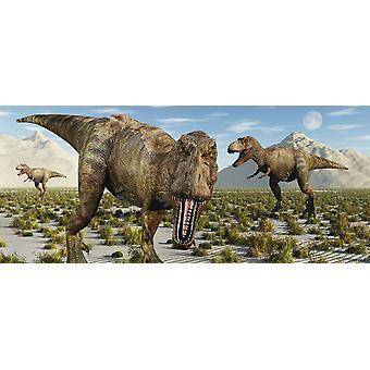 En förpackning med köttätande Tyrannosaurus rex dinosaurier under jordarter krita perioden affisch Skriv