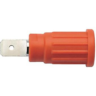 Safety jack socket Socket, vertical vertical Pin diameter: 4 mm Red