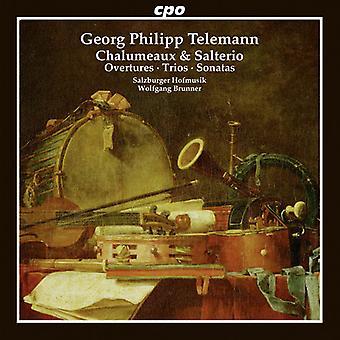 Telemann / Hofmusik / Brunner - Telemann: importazione USA Chalumeau & Salterio [CD]