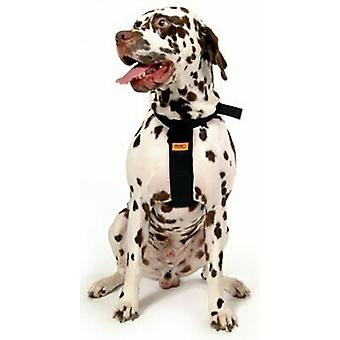RAC Standard dog car harness
