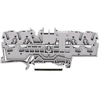 WAGO 2002-1801 Continuity 5.20 mm Pull spring Configuration: L Grey 1 pc(s)