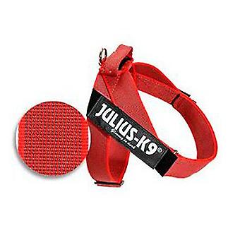 Julius K9 Harness Color & Gray IDC red Size 0