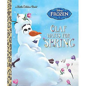 OLAF wacht op de lente (Disney Frozen) (gouden boekje)