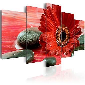Artgeist Canvas Print Gerbera bloem en Zen Stones