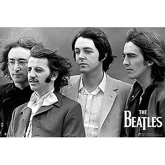 The Beatles Hfe Poster Poster Print