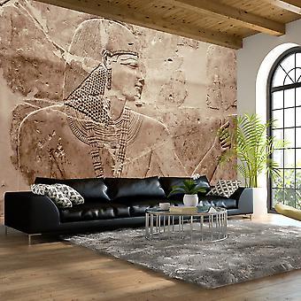 Behang - stenen farao