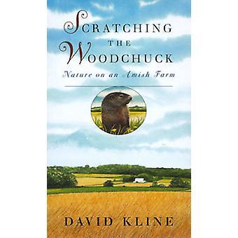Graffiare la natura di marmotta su una fattoria Amish di Kline & David