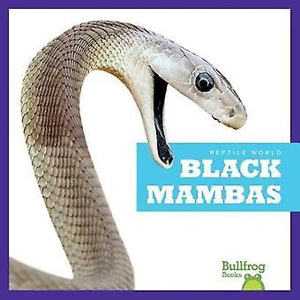 Black Mambas by Imogen Kingsley - 9781620316634 Book