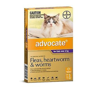Advocate 3 Pack Large Cat over 4kg