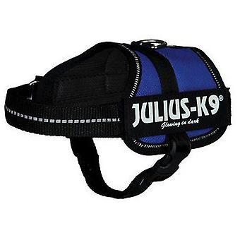Julius K9 Harness Julius K9 Blue (Dogs , Collars, Leads and Harnesses , Harnesses)