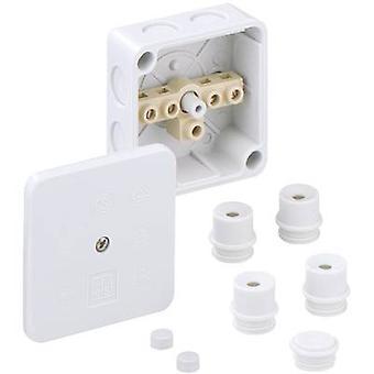 Spelsberg 40240701 Joint box (L x W x H) 80 x 80 x 38 mm Grey IP54